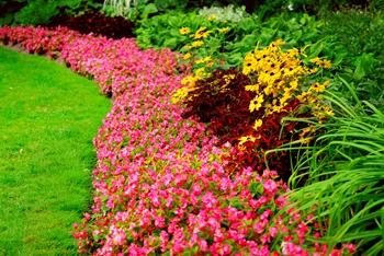 fairfax landscaping
