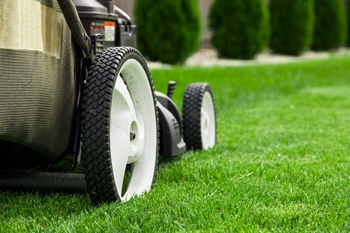 lawn care fairfax va