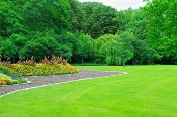 lawn fertilization fairfax va